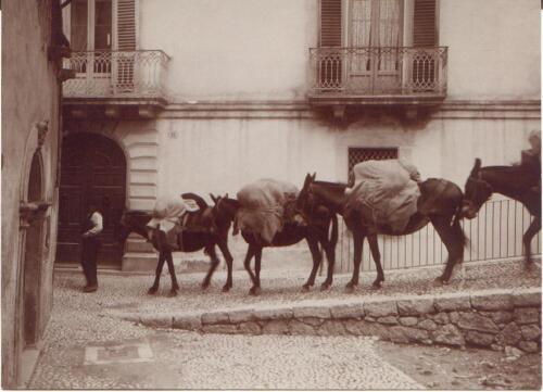 casa Domenico di Rienzo-339
